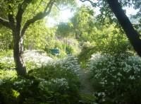 Art in the Garden (2)