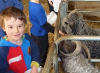 Children's Programme (8)