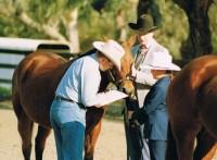 Gill & Hollywood in a Horsemanship Class