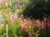 Children's Garden (1)