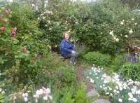 Open Garden - 2013
