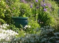 Art in the Garden (1)