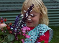 2015 Children's Programmes - Actvities (1)