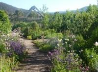 Art in the Garden (3)